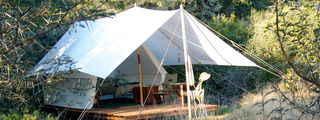 Browse_size_tent