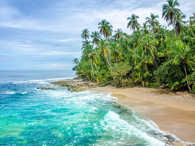 Large manzanillo beach carribbean coast costa rica  medium